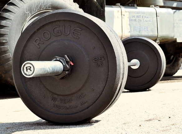 hi temp bumper plates from rogue fitness